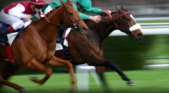 How Betting the Right Horse at the Right Time Can Make You a Big Winner
